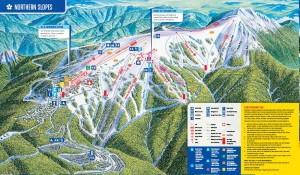Mt Buller's Northern Slopes
